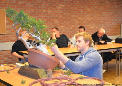 Yama-bonsai_BjornDemo_07