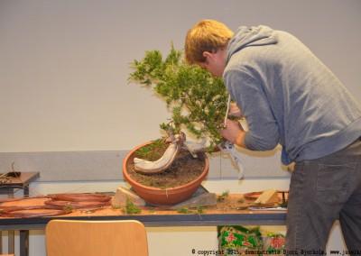 Yama-bonsai_BjornDemo_14