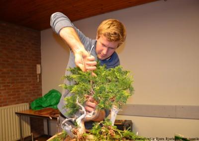 Yama-bonsai_BjornDemo_19
