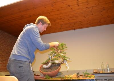 Yama-bonsai_BjornDemo_24