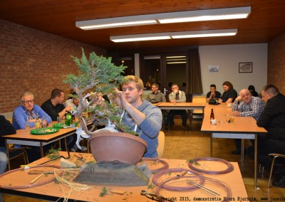 Yama-bonsai_BjornDemo_25