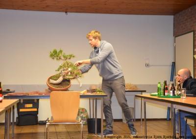 Yama-bonsai_BjornDemo_31