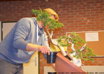 Yama-bonsai_BjornDemo_33