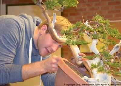 Yama-bonsai_BjornDemo_36