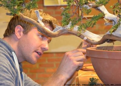 Yama-bonsai_BjornDemo_38