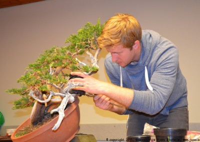 Yama-bonsai_BjornDemo_43