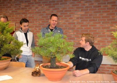 Yama-bonsai_Bjorn_011