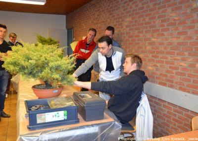 Yama-bonsai_Bjorn_012
