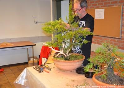 Yama-bonsai_Bjorn_077